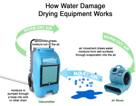 water-damage-restoration-process